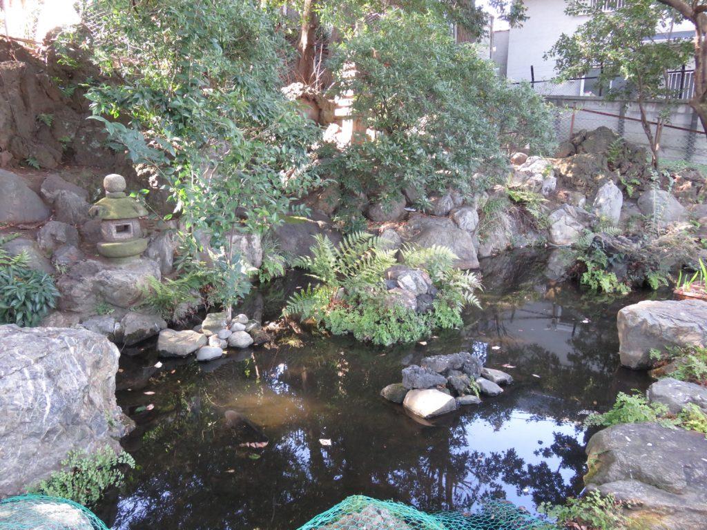 中目黒八幡神社参道池