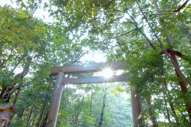近所の神社で初詣!!!近くのパワースポットに注目