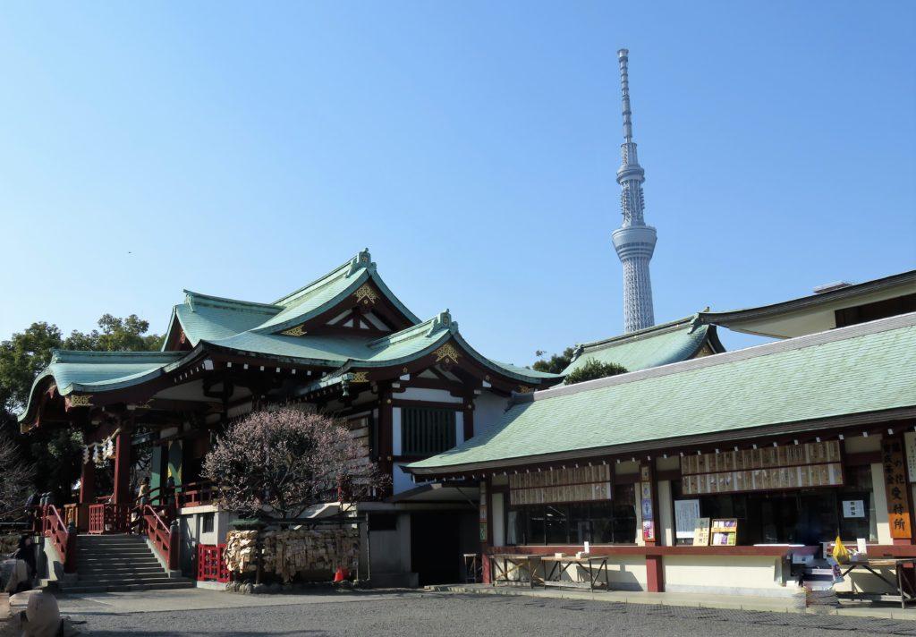 亀戸天神社拝殿とスカイツリー
