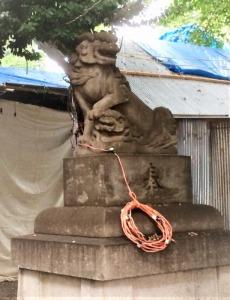 花園神社狛犬右
