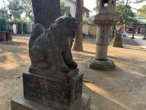 品川神社狛犬3