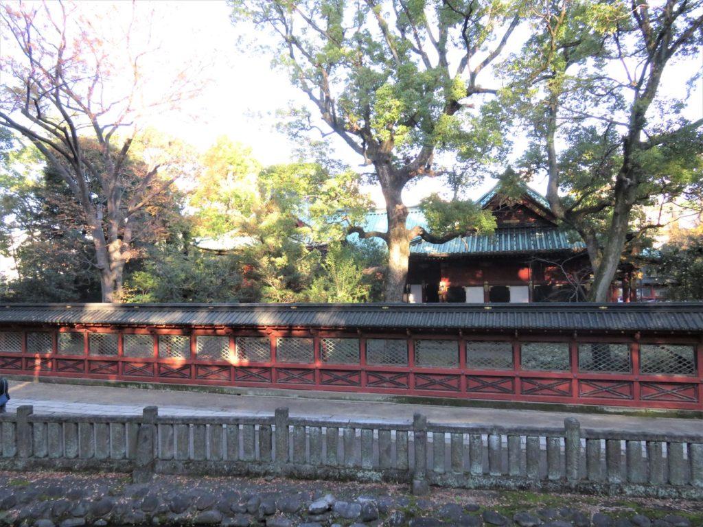根津神社展望