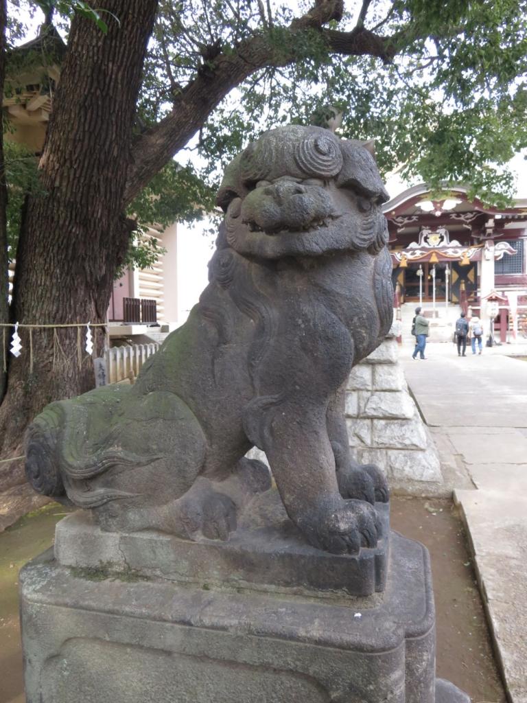 新宿諏訪神社狛犬3