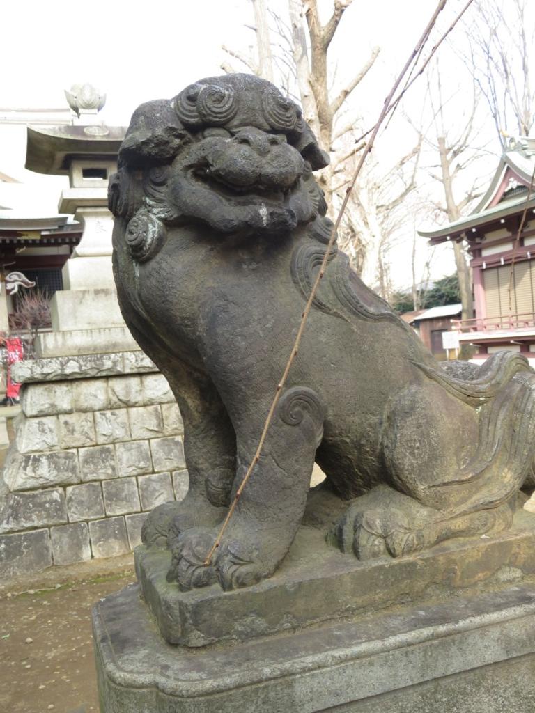 新宿諏訪神社狛犬4
