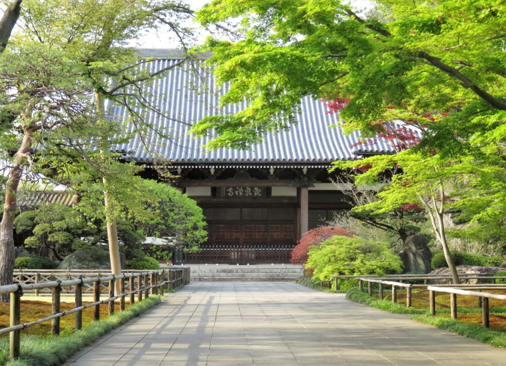 観泉寺本堂2