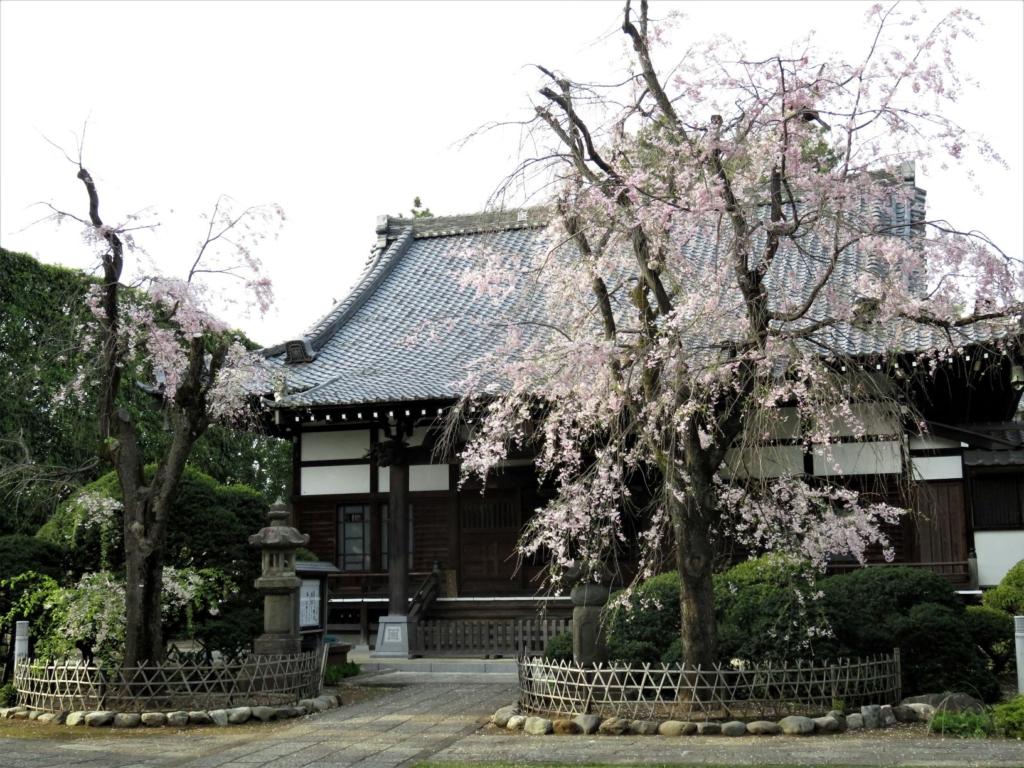妙正寺本堂2