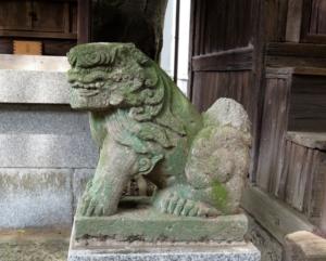 中村八幡神社狛犬4