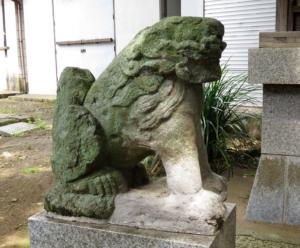 中村八幡神社狛犬3