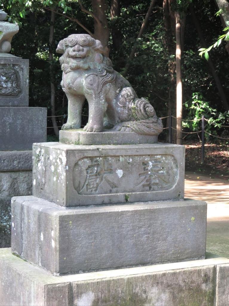 石神井氷川神社狛犬3