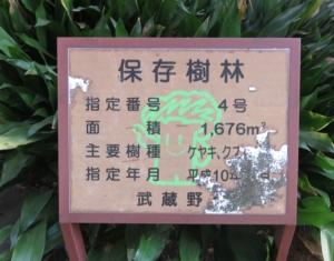 武蔵野市保護樹林