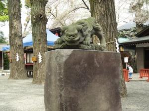 田無神社狛犬4