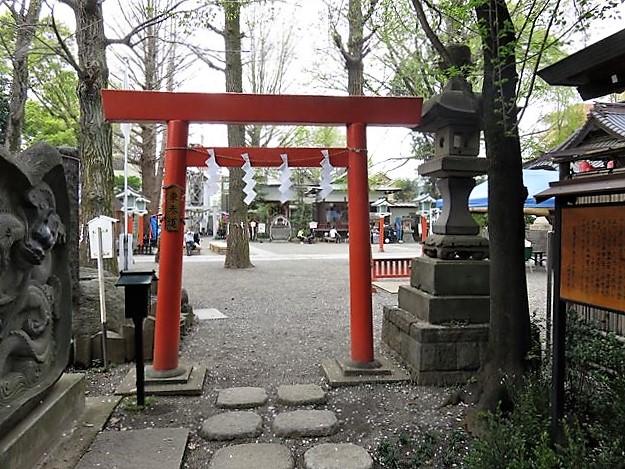 田無神社東鳥居